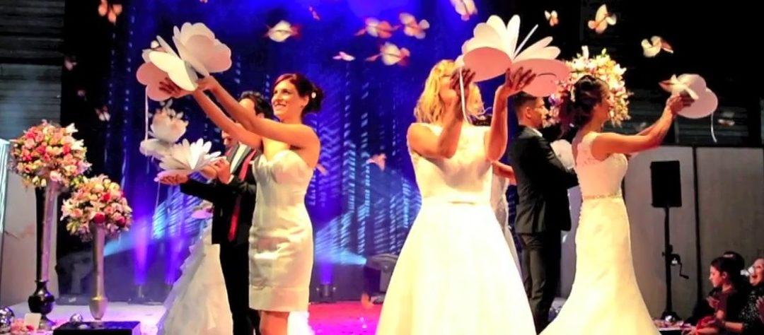 Lâcher de papillon pour le mariage : comment faire?